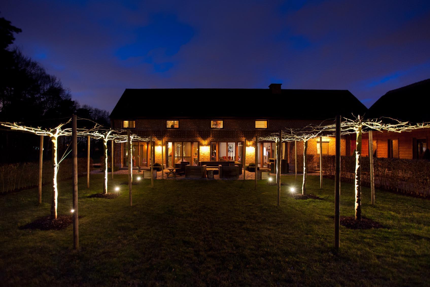 tuin boom spot up verlichting